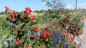 Le Fleurissement à Viriat
